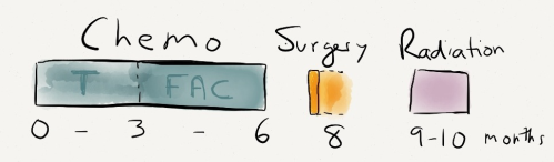 Day_15_chemo_surgery_radiation-3
